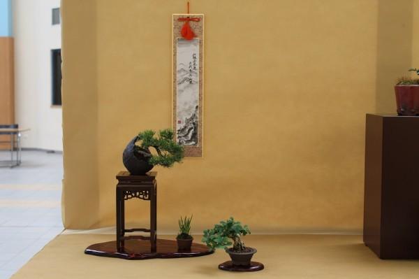 eba 2014 wroclaw par bonsai araki